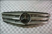 Mercedes Benz C Class W204 Front Radiator Grille Paneling w/ star 2048800023 OEM