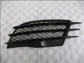Audi R8 Front Bumper Lower Left Grill Grille 420807681 OEM A1