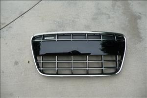Audi R8 V8 V10 Spyder Front Grill Grille 420853651 OEM OE